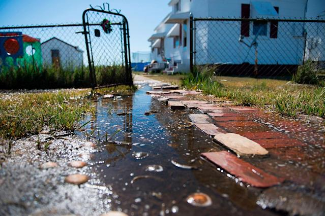 <p>Sea water collects on the front walk way of a home in Tangier, Virginia, May 15, 2017, where climate change and rising sea levels threaten the inhabitants of the slowly sinking island.<br> (Jim Watson/AFP/Getty Images) </p>
