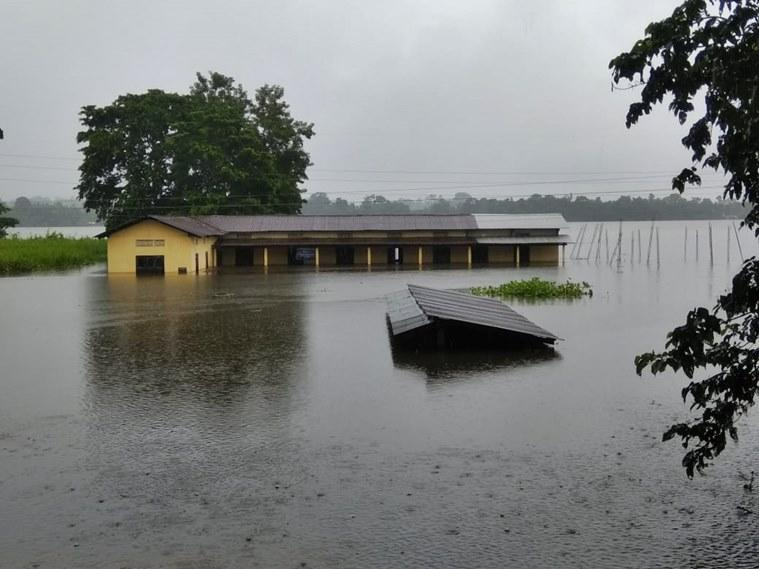 Kaziranga's circle of life: How forest dept, vets and villagers join hands to fight flood fury