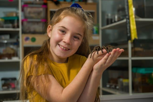 Meet the eight-year-old conservationist who loves spiders so much that she shares her bedroom - with more than 50 of them