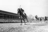 FILE - In this June 12, 1948, file photo, Citation, jockey Eddie Arcado up, races for a win and the Triple Crown in the $100,000 added Belmont Stakes at Belmont Park race track in Elmont, N.Y. Secretariat is the early 7-2 favorite for this weekend's virtual Kentucky Derby, an animated race pitting all 13 Triple Crown winners on the day the Derby would have been held before the coronavirus pandemic postponed it. Citation was made the 4-1 second choice. (AP Photo/File)