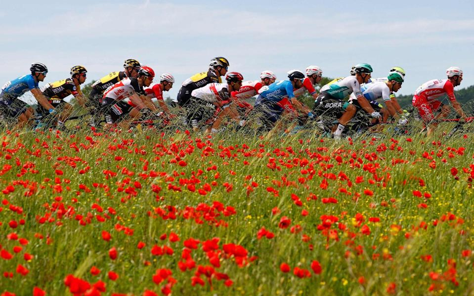 The peloton - GETTY IMAGES
