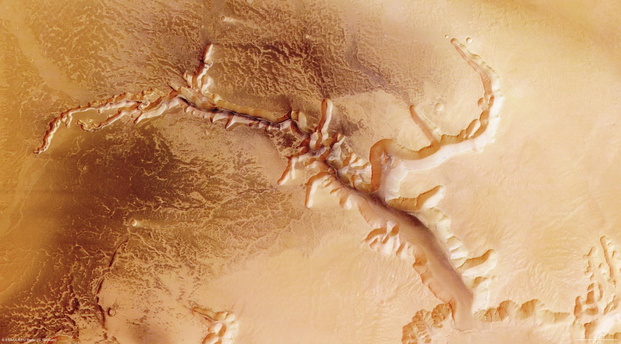 The High-Resolution Stereo Camera (HRSC) on board ESA?s Mars Express has returned images of Echus Chasma in this image made available on July 14, 2008. Echus Chasma is an approximately 100 km long and 10 km wide incision in the Lunae Planum high plateau north of Valles Marineris, the ?Grand Canyon? of Mars.