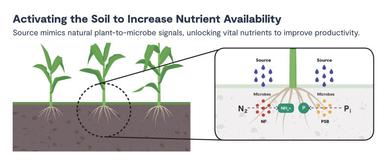 Source(tm) helps growers maximize crop performance by activating nutrients that already exist in the field.