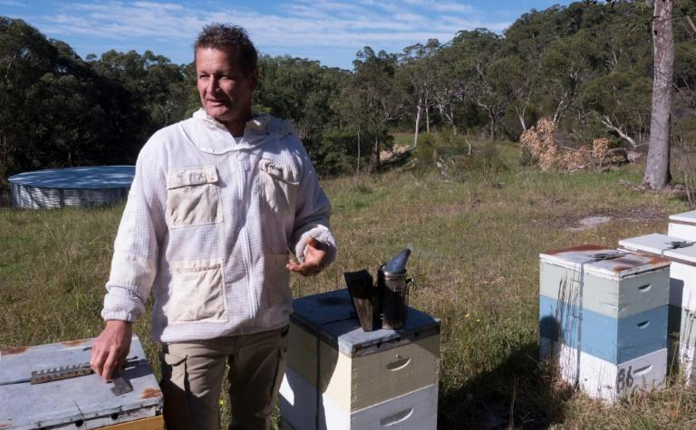 An explosion in demand attributed to the pandemic pushed honey exports to a new record in 2019-20, of which manuka honey made up 76 percent