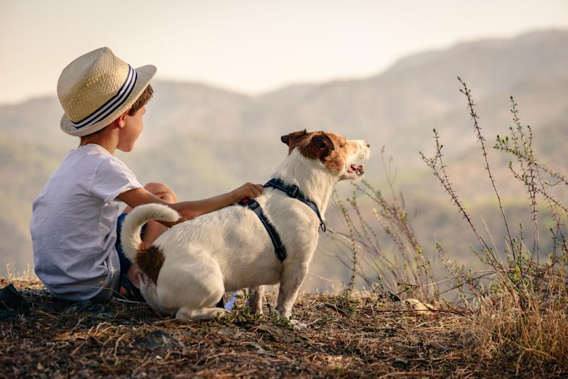 Boy hiking with dog in mountains