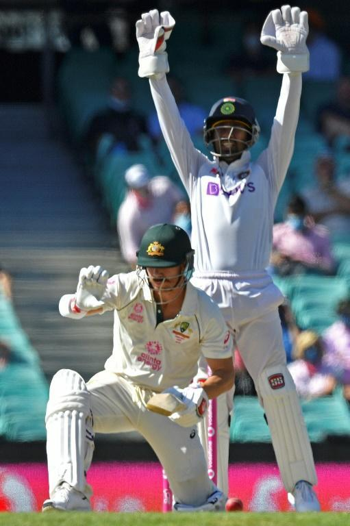 Australia's David Warner managed just 13 in the seond innings against India