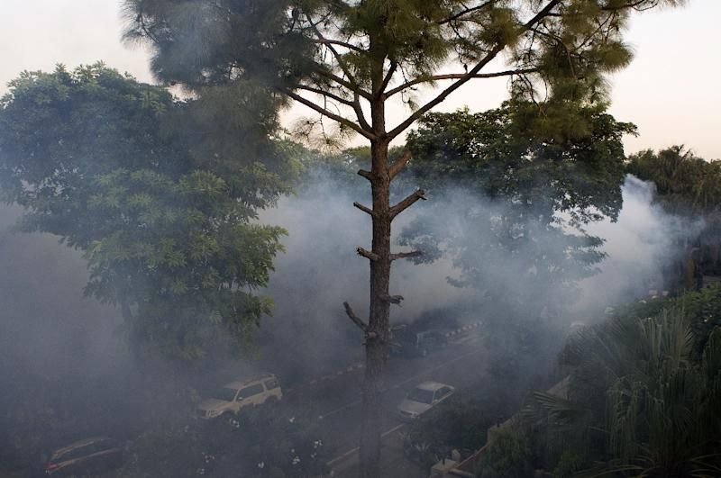 Insecticide fumes cover a neighbourhood in New Delhi as sanitation workers spray the area in an effort to control mosquitoes that spread dengue fever in the Indian capital on October 2, 2015