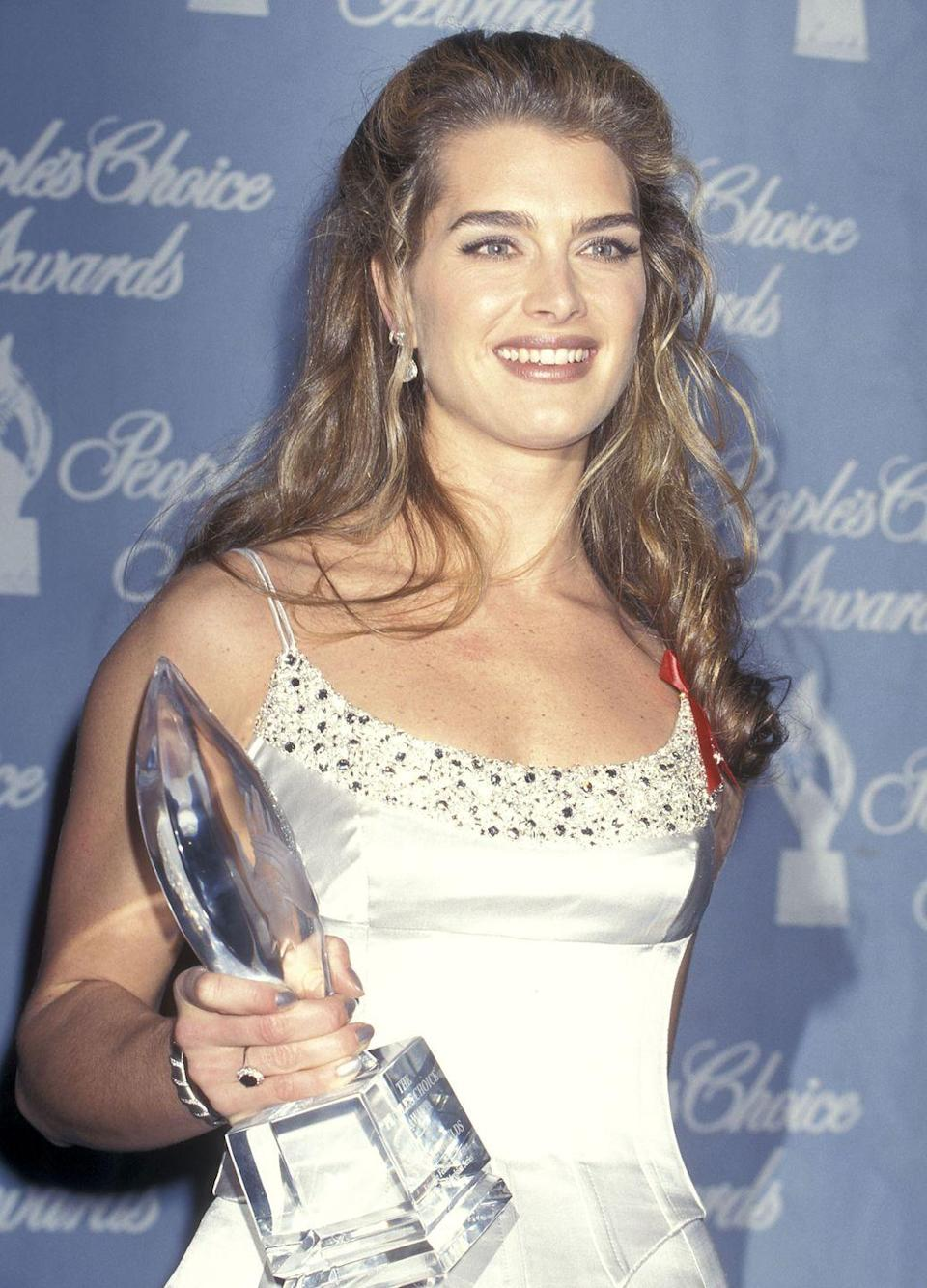<p>Her role in <em>Friends</em> led to a much bigger one: her leading role as Susan Kane in <em>Suddenly Susan</em>. The role garnered a lot of attention for Brooke, and she starred in the show until 2000. It also earned her a People's Choice Award for Favorite Female Performer in 1997. </p>