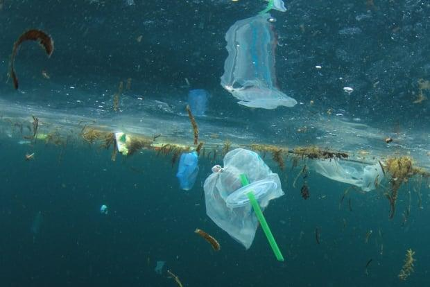 According to Ocean Wise, 11 million tons of plastic waste ends up in the ocean each year. (Shutterstock / Rich Carey - image credit)