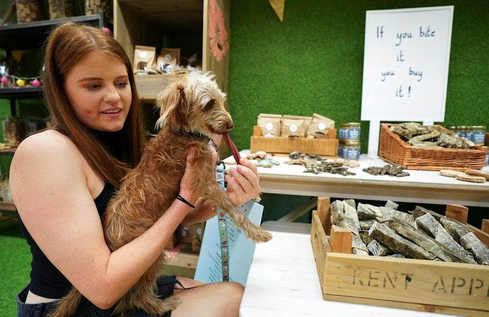 Holly and her Italian greyhound toy poodle (Andrew Matthews/PA) (PA Wire)