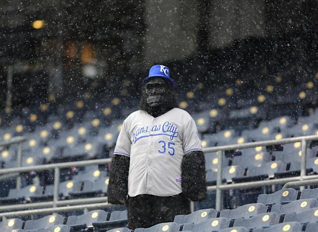 KANSAS CITY, MO - MAY 2: A lone fan stands in watches snow falls during a delay in play between the Tampa Bay Rays and the Kansas City Royals at Kauffman Stadium on May 2, 2013 in Kansas City, Missouri. The game was postponed due to weather. (Photo by Ed Zurga/Getty Images)