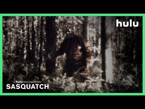 """<p>Sasquatch. Bigfoot! The beast goes by many names. Bet you didn't think that the fuzzy guy would <a href=""""https://www.esquire.com/entertainment/tv/a36279117/david-holthouse-sasquatch-interview/"""" rel=""""nofollow noopener"""" target=""""_blank"""" data-ylk=""""slk:make for one of the best true crime documentary series of 2021"""" class=""""link rapid-noclick-resp"""">make for one of the best true crime documentary series of 2021</a>, but here we are. Follow journalist David Holthouse's batshit quest to solve a triple homicide where the killer is alleged to be, you guessed it, Sasquatch.</p><p><a class=""""link rapid-noclick-resp"""" href=""""https://go.redirectingat.com?id=74968X1596630&url=https%3A%2F%2Fwww.hulu.com%2Fseries%2Fsasquatch-6ddd5226-6a50-4bba-aa1c-391b76180b48&sref=https%3A%2F%2Fwww.esquire.com%2Fentertainment%2Fmusic%2Fg30389440%2Fbest-shows-on-hulu%2F"""" rel=""""nofollow noopener"""" target=""""_blank"""" data-ylk=""""slk:Watch Now"""">Watch Now</a></p><p><a href=""""https://www.youtube.com/watch?v=G8pVypMhub8"""" rel=""""nofollow noopener"""" target=""""_blank"""" data-ylk=""""slk:See the original post on Youtube"""" class=""""link rapid-noclick-resp"""">See the original post on Youtube</a></p>"""