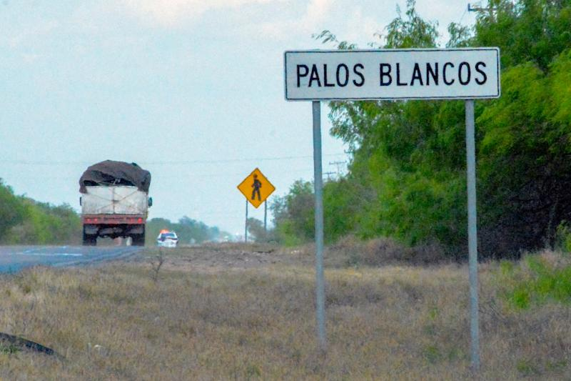 Nineteen migrants were kidnapped from a bus in northern Mexico near the US border