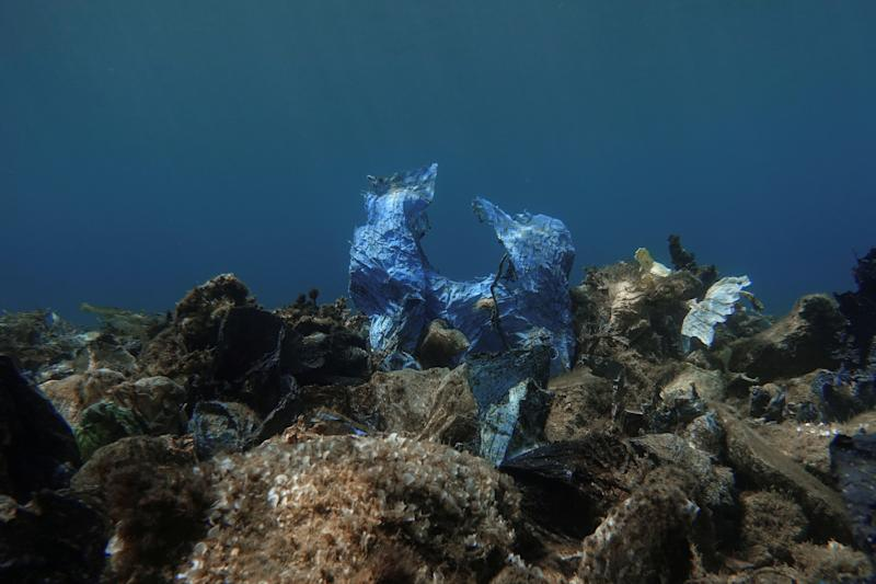 A plastic bag is seen at the bottom of the sea, off the island of Andros, Greece. (Photo: Stelios Misinas/Reuters)