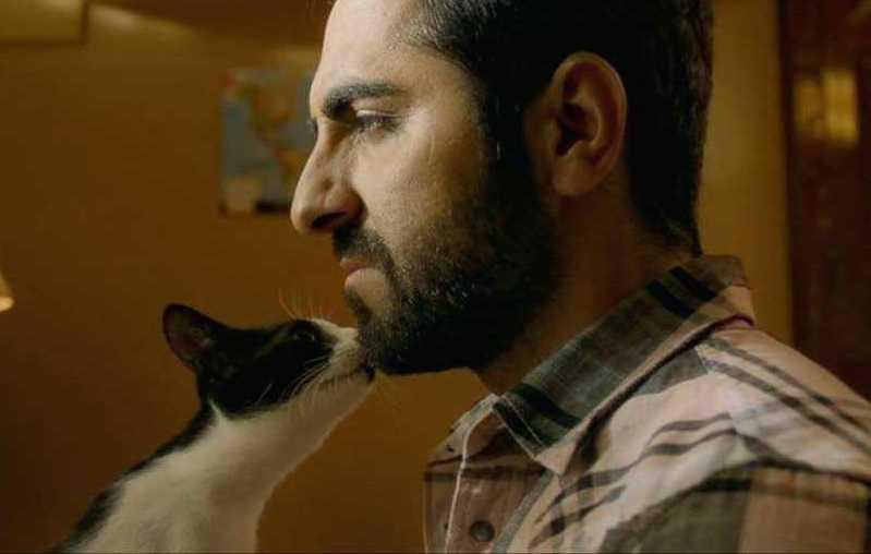 Often called the Amol Palekar of this generation, Ayushmann has created his own niche of well-written and sensitively portrayed roles. In Andhadhun, the actor plays a blind pianist who gets caught in a crime of passion and has to scrap his way out of trouble. The role demanded a fascinating combination of canniness and vulnerability and Ayushmann was the perfect man for the job. The film was one of the big surprises of 2018, grossing a stunning Rs 456 crore worldwide.