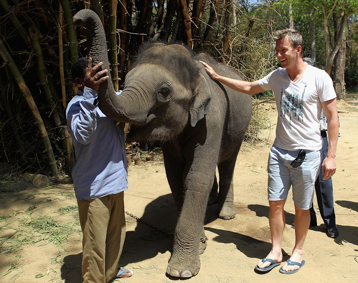 BANGALORE, INDIA - MARCH 12:  Brett Lee of Australia meets a young Indian elephant during a visit to the Bannerghatta Biological Park on March 12, 2011 in Bangalore, India.  (Photo by Hamish Blair/Getty Images)