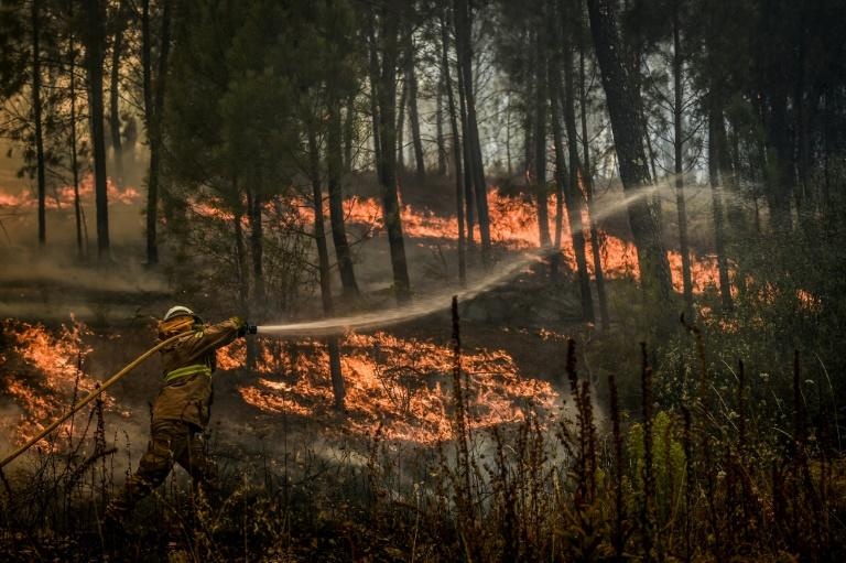 'Often a fire is controlled at night and then it rekindles in the morning,' one expert said (AFP Photo/PATRICIA DE MELO MOREIRA)