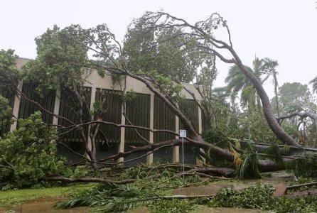 A tree that was uprooted due to winds from Tropical Cyclone Marcus lies on a building in the Northen Territory capital city of Darwin in Australia, March 17, 2018. AAP/Glenn Campbell/via REUTERS