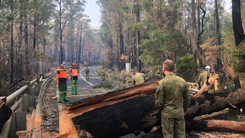 ADF soldiers and civilian authorities clear trees from a road near the NSW Victorian border