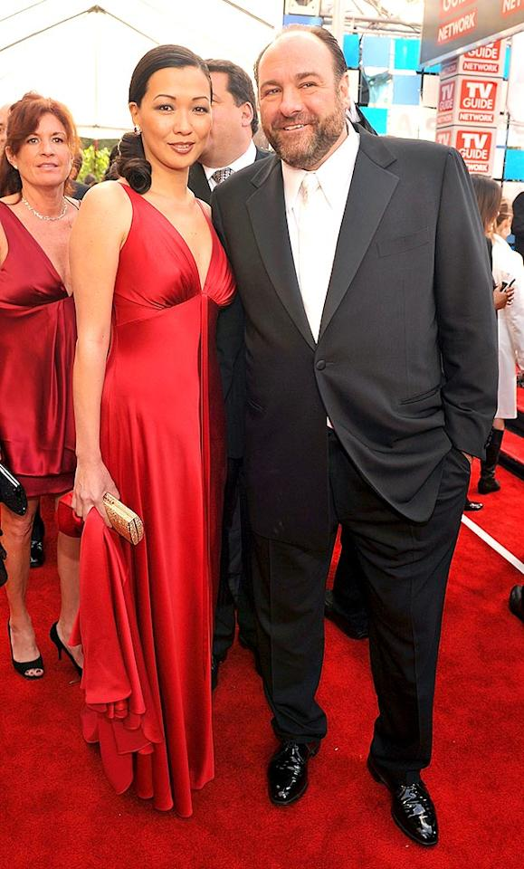 """Sopranos"" star James Gandolfini shows off his stunning fiancee Deborah Lin on the red carpet. Lester Cohen/<a href=""http://www.wireimage.com"" target=""new"">WireImage.com</a> - January 27, 2008"