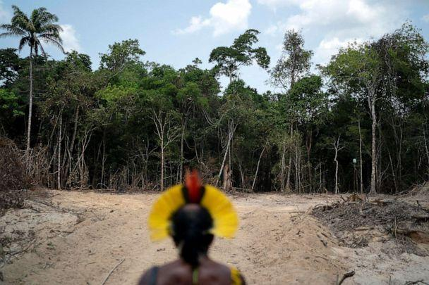 PHOTO: Krimej Indigenous Chief Kadjyre Kayapo looks out at a path created by loggers on the border between the Biological Reserve Serra do Cachimbo and Menkragnotire indigenous lands in Altamira, Para state, Brazil, Aug. 31, 2019. (Leo Correa/AP, FILE)