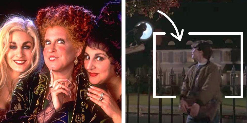 <p>Like candy apples and trick or treating, <em>Hocus Pocus</em> is a hilarious and haunting Halloween classic that stands the test of time. From a talking black cat to witches, magic spells and even a foul-mouthed zombie, this 1993 Disney movie takes all your favorite parts of this holiday and combines them into one ultimate Halloween movie masterpiece. In fact, <em>Hocus Pocus</em> still airs on Disney Channel and Freeform (formerly ABC Family) every year and has developed a cult following of fans who are (understandably) majorly obsessed with the Sanderson sisters.</p><p>But even the most loyal fans miss a few details here and there. No matter how many times you might have seen Winifred, Mary and Sarah sashay down the sidewalk in unison or figure out how to navigate the wonders of public transportation, <em>Hocus Pocus</em> is the movie that is always full of surprises. Here are a few head-scratching facts you probably missed about the film that might make you want to go watch it one more time.</p>