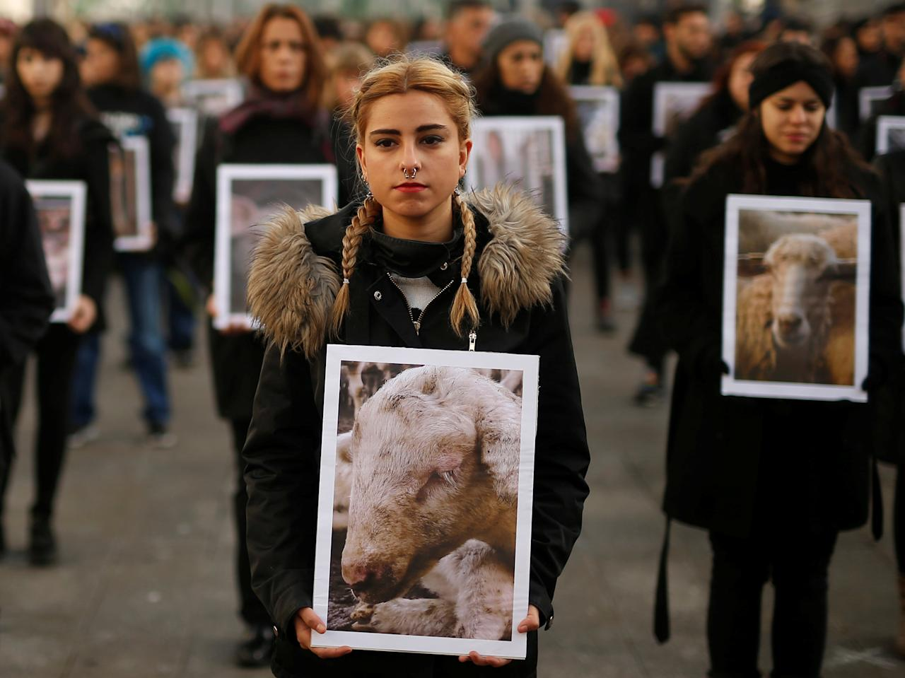 REFILE - ADDING RESTRICTION Animal rights activists from Igualdad Animal (Animal Equality) hold up pictures of animals they say are mistreated, during a demonstration to protest treatment of animals and draw attention to International Animal Rights Day, which organisers say is celebrated alongside International Human Rights Day, in Madrid, Spain December 9, 2017. REUTERS/Javier Barbancho. NO RESALES. NO ARCHIVE.