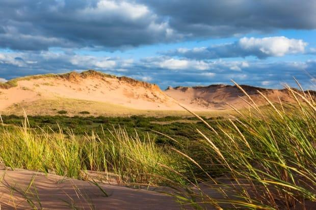 Sand dunes act as a natural barrier from the effects of storms and waves, Parks Canada says. (D. Wilson/Parks Canada - image credit)