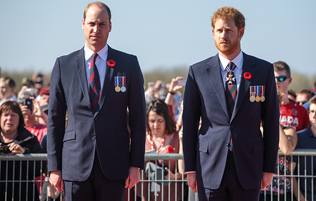 Prince William and Harry have spoken out for a BBC documentary about their mother's death. Photo: Getty