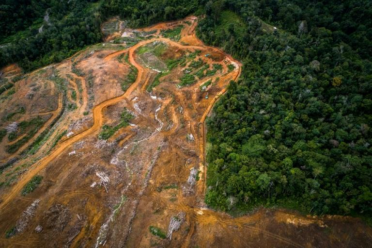 An aerial view shows land cleared for the hydroelectric dam in Indonesia's Batang Toru rainforest