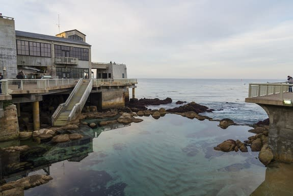 Photos Show Beauty of California's King Tides