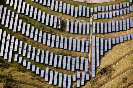 FILE PHOTO - An array of solar panels in Oakland California
