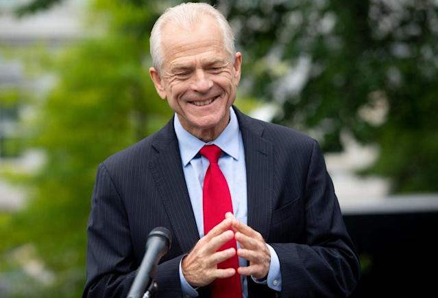 White House economic adviser Peter Navarro refused to answer CNN reporter Jake Tapper's questions about the president's contradictory remarks about the coronavirus pandemic. (AFP via Getty Images)