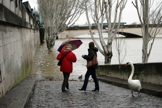 <p>A swan and women walks past the river Seine in Paris, Thursday, Jan.25, 2018. (Photo: Christophe Ena/AP) </p>