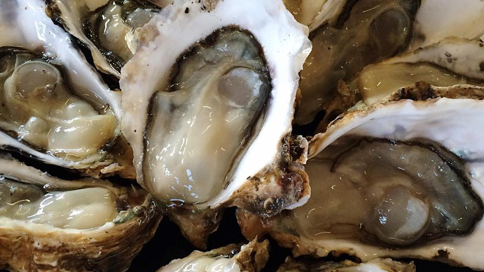 Florida man dies from virus after eating raw oysters