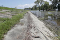 In this July 25, 2019 photo, water lines and receding water are seen on the backside of the Mississippi River levee in Norco, La., just upriver from New Orleans. The river that drains much of the flood-soaked United States is running far higher than normal this hurricane season, menacing New Orleans in multiple ways. One continuing concern is the massive volume of water that for months has been pushing against levees protecting a city that's mostly below sea level. (AP Photo/Gerald Herbert)