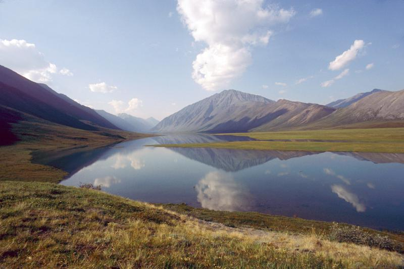 Parts of the Arctic National Wildlife Refuge, in northeastern Alaska, are thought to contain more than 10 billion barrels of oil. (Universal ImagesGroup via Getty Images)