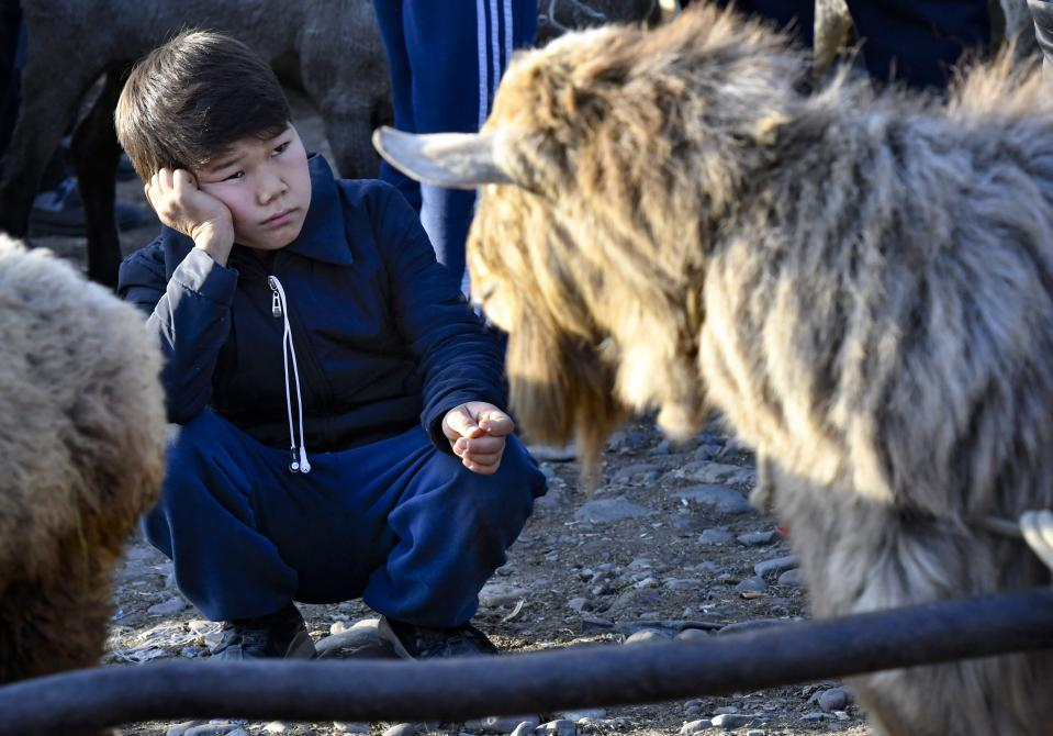 A Kyrgyz boy looks sad at a goat for sale at the Moscow market in Belovodskoye village, about 45 kilometers (28 miles) southwest of Bishkek, Kyrgyzstan, Sunday, Oct. 18, 2020. Kyrgyzstan, one of the poorest countries to emerge from the former Soviet Union, where political turmoil has prompted many people to have little respect for authorities, whom they see as deeply corrupt. (AP Photo/Vladimir Voronin)