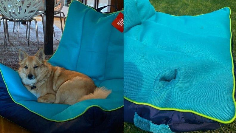 We can't deny the level of comfort that comes with the Captain's Pool Float from Big Joe–even our family dog enjoyed resting in it.