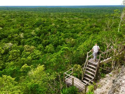 Archaeologist Richard Hansen looks out over the Maya Biosphere he hopes to develop from a tower at El Mirador. Photo by Kelly McLaughlin.