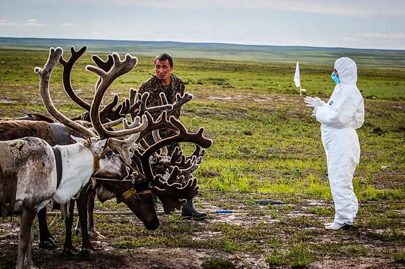 In 2016 a child died in Russia's far northern Siberia in an outbreak of anthrax that scientists said seemed to have come from the corpses of infected reindeers buried 70 years before but uncovered by melting permafrost (AFP Photo/-)