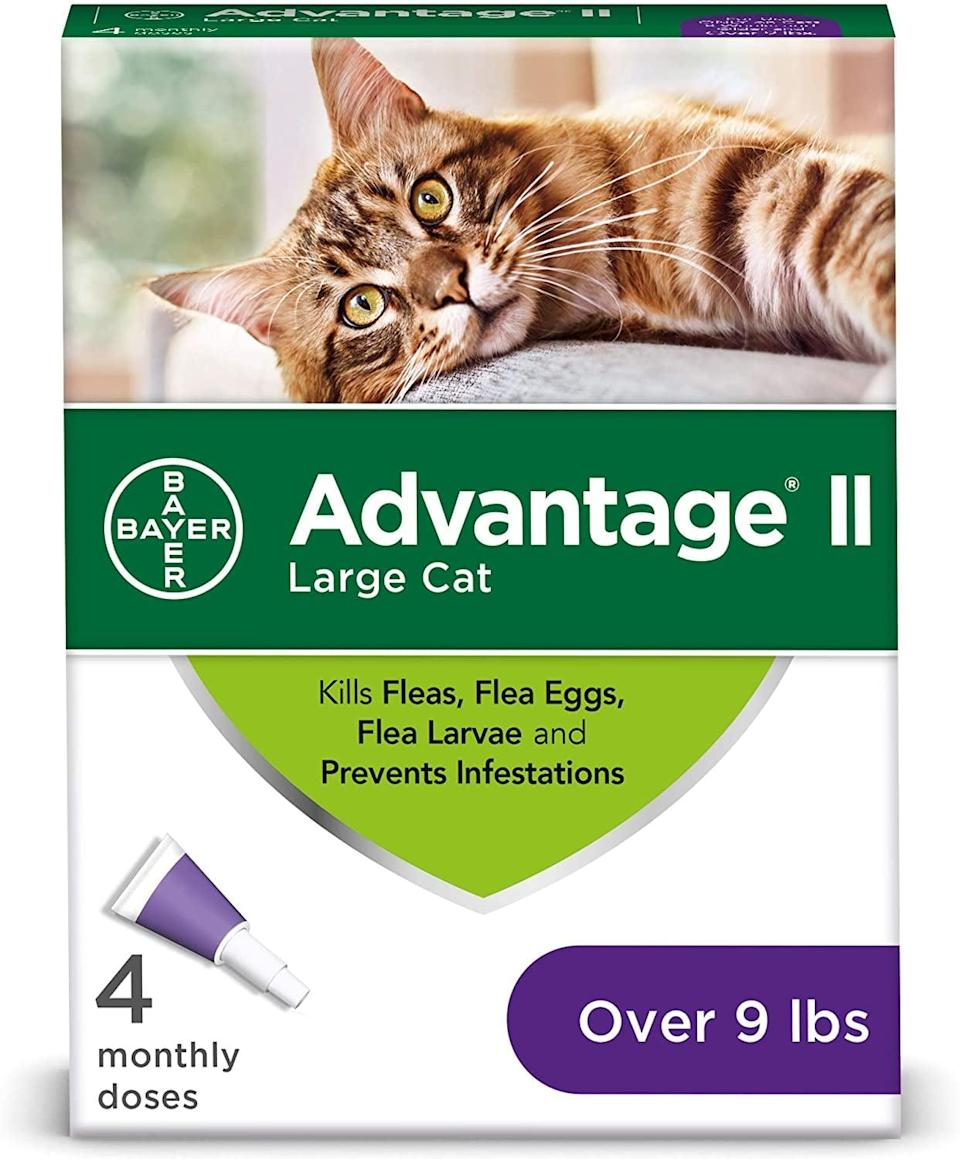 <p><span>Advantage 4-Dose Flea Prevention For Large Cats 9 Pounds and Over</span> ($35, originally $44)</p>