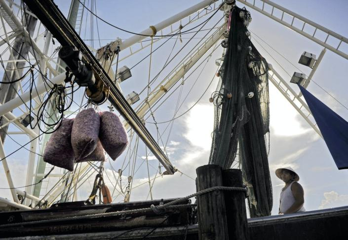 A fisherman in a round hat watches stands on a boat with rigging as bags of shrimp being moved off by a boom arm.