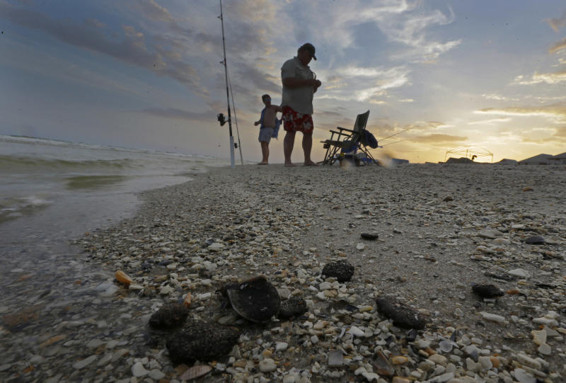 In this Tuesday, June 11, 2013, photo, tar balls lie mixed with shells on the beach in Gulf Shores, Ala. After three years and $14 billion worth of work following the BP oil spill in the Gulf of Mexico, the petroleum giant and the Coast Guard say it's time to end extraordinary cleanup operations in Alabama, Florida and Mississippi. (AP Photo/Dave Martin)