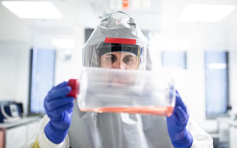 Growth media for virus production is examined in the Valneva laboratories - Akos Stiller