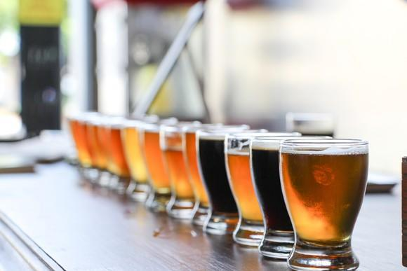 A line of craft beers in a row for a tasting.