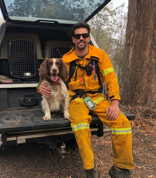 Taylor, a koala detection dog, poses for a photo with animal trainer Ryan Tate at bushfire-affected Taree, New South Wales, Australia