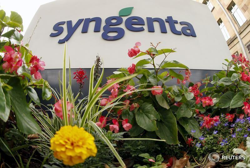 Flowers grow in front of Swiss agrochemicals maker Syngenta's logo at the company's headquarters in Basel