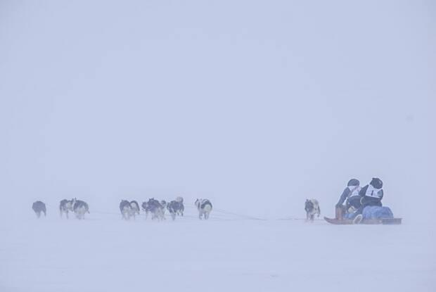 Mushers Johnny May Jr. and Ahuya Snowball May set off from the start line on the ice outside Salluit in snowy conditions during the 2021 edition of the Ivakkak Race. The grueling multi-day race runs between the isolated communities of Nunavik in northern Quebec. (Ivakkak 2021/Facebook - image credit)