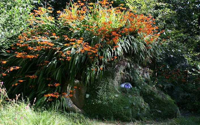 The Giant's Head at the Lost Gardens of Heligan will enchant and delight children - Julian Stephens
